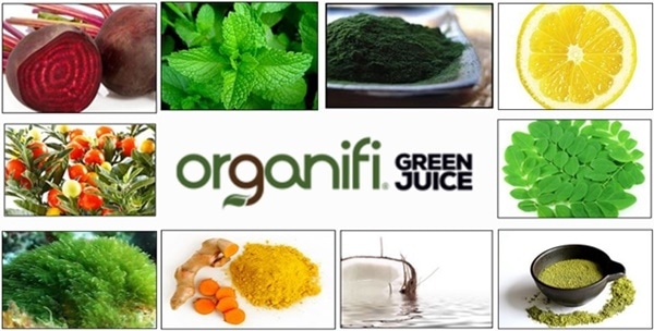 organifi-green-juice-ingredients