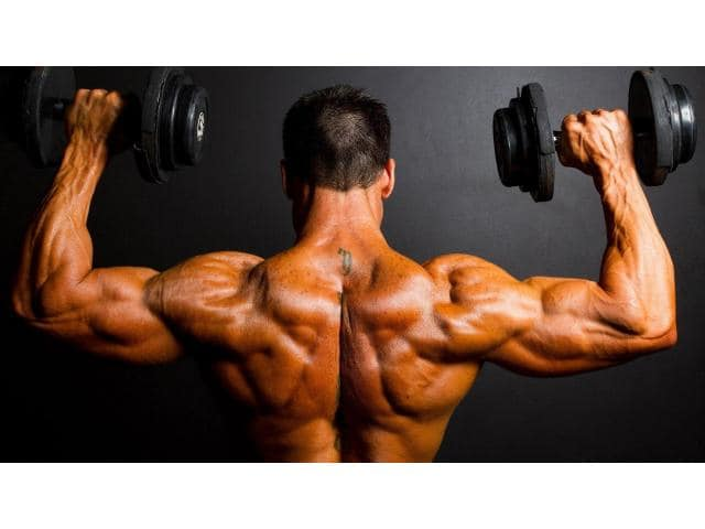 promuscle