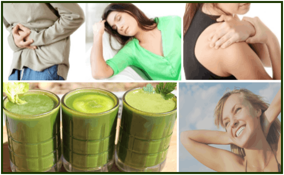 beneficios ofOrganifi_Green_Juice